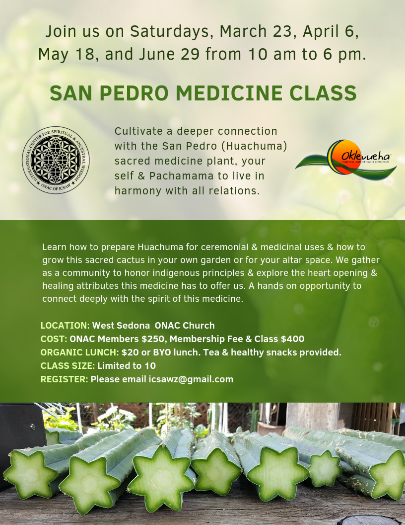 1.1 2019 SAN PEDRO MEDICINE CLASSES